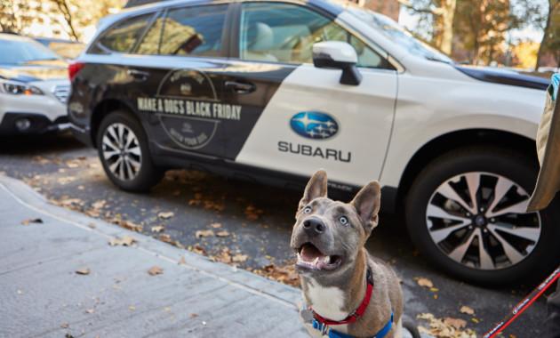 """Subaru предложил альтернативу """"Черной пятнице"""""""
