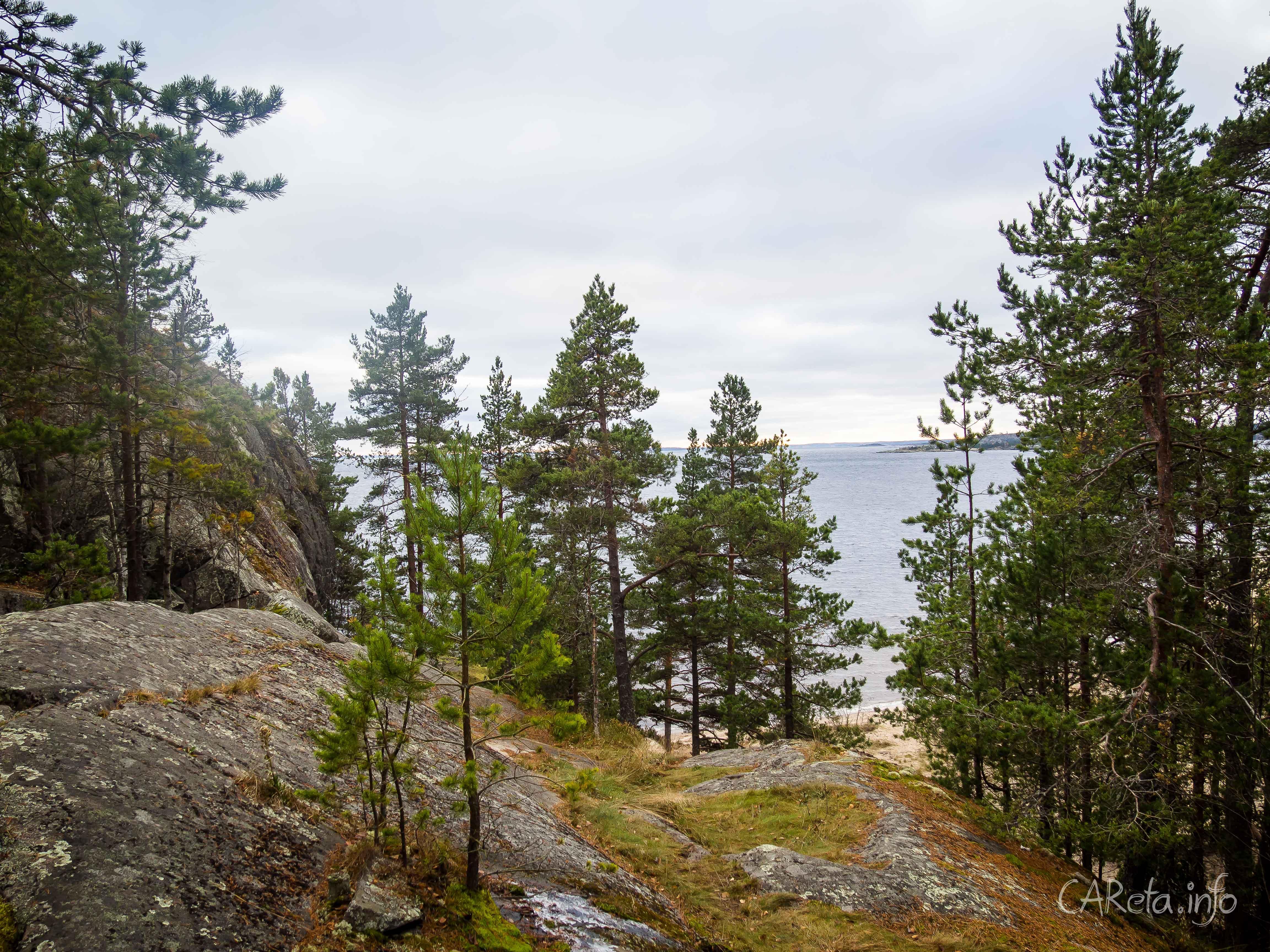 Путешествие в Карелию по медвежьей земле на SKODA Kodiaq