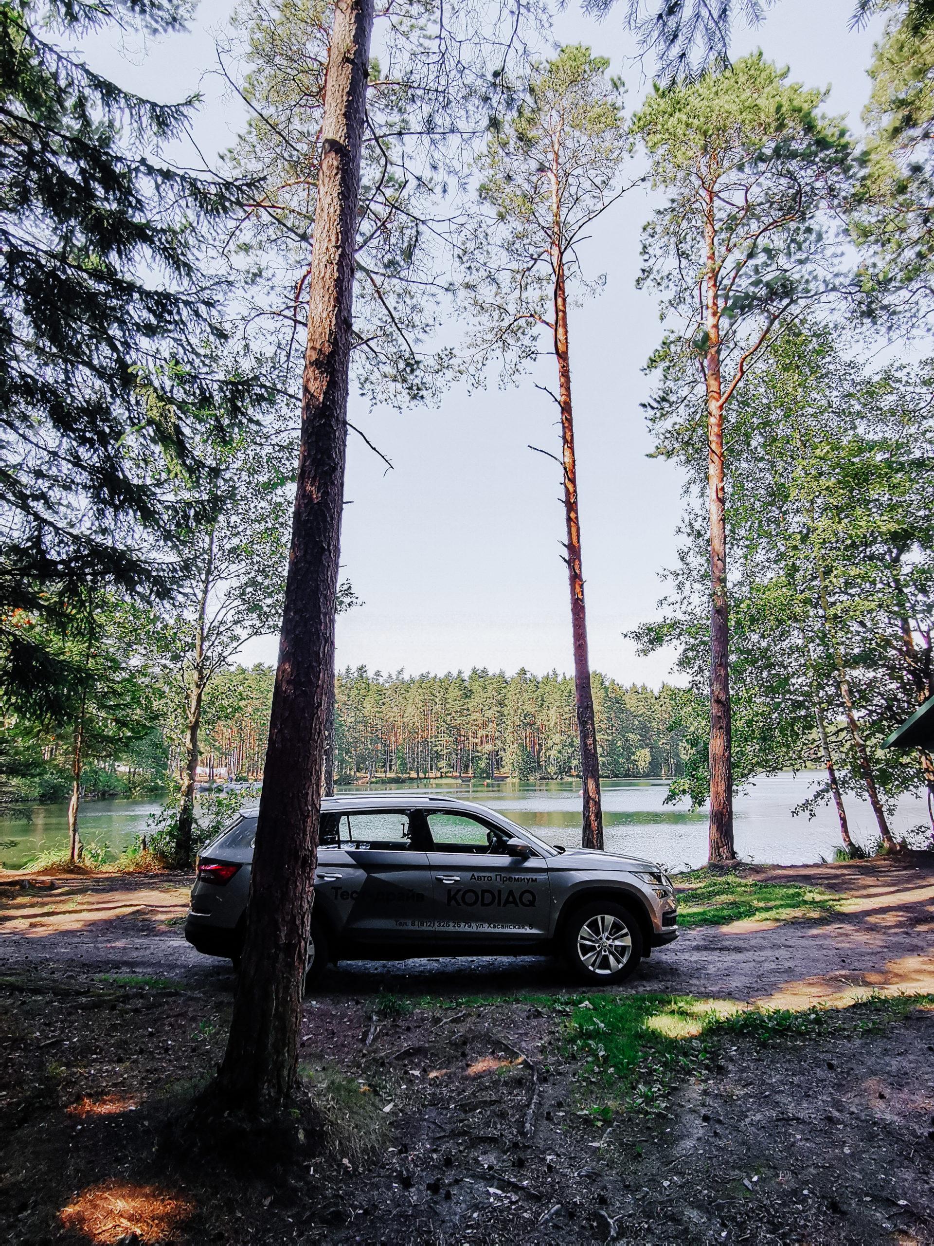 Нет ничего более практичного, чем Skoda Kodiaq: обзор чешского автомобиля
